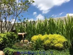 庭園設計 庭園造景 庭園景觀