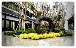 登陽春賞 中庭 空中花園景觀