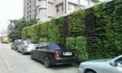 牆面綠化工程設計 規劃&施工