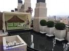 大城仰望蔡公館 景觀設計