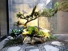 新富街張公館  景觀設計工程
